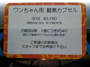 Dsc_2178