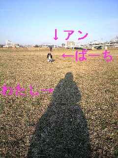 2011030522